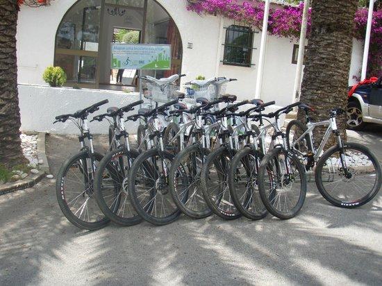 Luz Ocean Club : Mountain bikes at reception