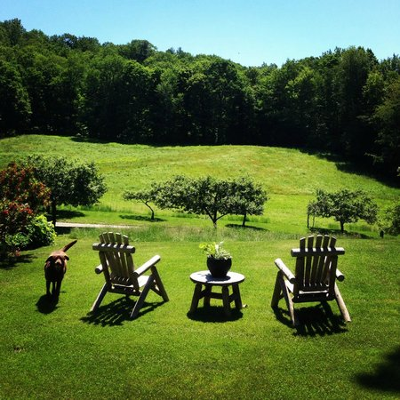 Steep Acres Farm Bed & Breakfast: The view