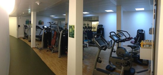HSG Alumni Haus: the gym was quite nice
