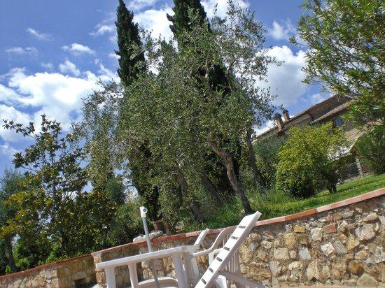Fattoria Argiano in Chianti : vom Pool aus