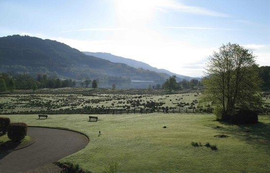 Loch Achray Hotel: View from one of the rooms on the front