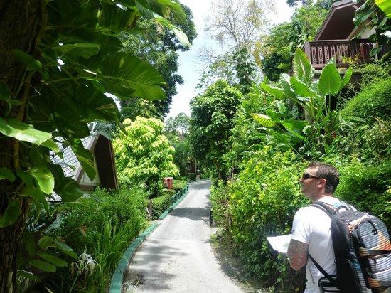 โรงแรมเซ็นทารา วิลล่า ภูเก็ต: lovely jungle surrounds