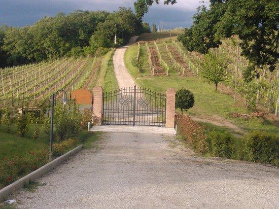 Agriturismo La Lucciolaia: Einfahrtstor