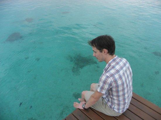 The Havannah, Vanuatu : See through water!