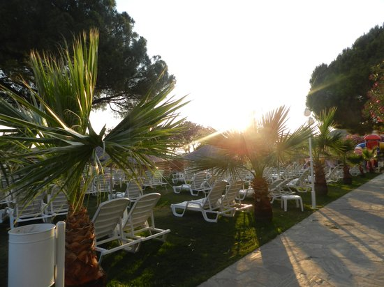 Grand Efe Hotel: pools