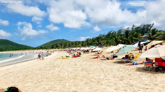 Club Seabourne : Culebra, PR