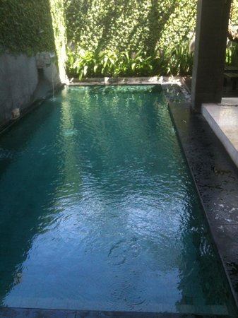 Annora Villas Seminyak : plunge pool