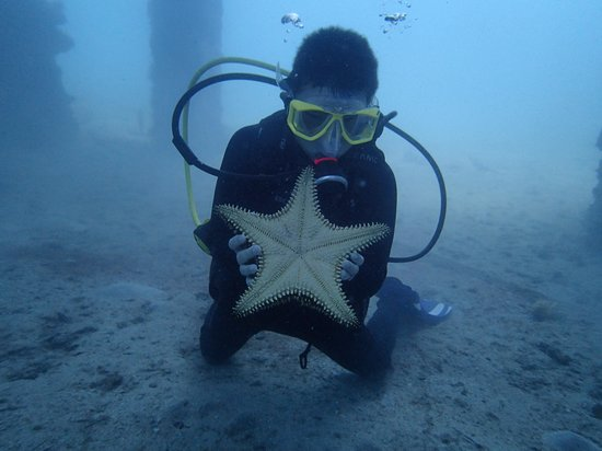 Casa La Lanchita: Grandson w/ Sea Star