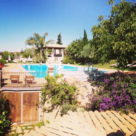 Agriturismo Il Granaio : Pool Area