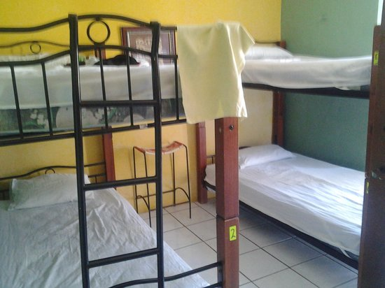 Monkey Hostel : Dormitory bed