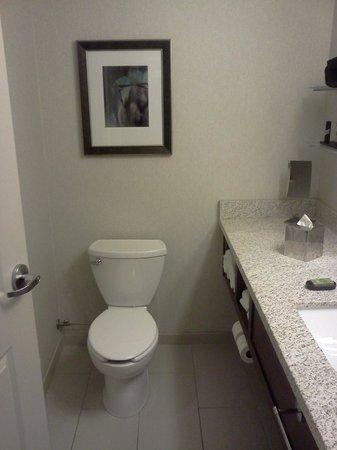 Embassy Suites by Hilton Denver - Downtown / Convention Center: Efficient bathroom