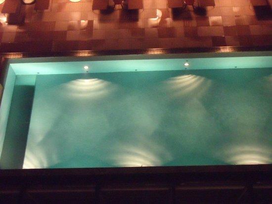 Novotel Lugano Paradiso: Blick auf den Pool