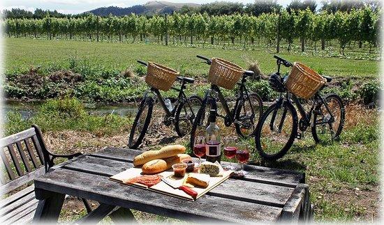 Cascadia Tours Wine Bikes
