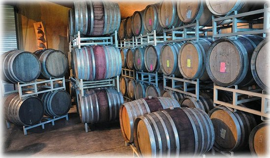 Cascadia Tours: Brick House Winery Barrel Cellar