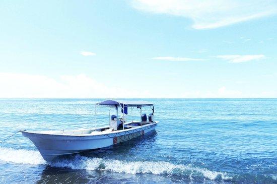 Black Marlin Dive Resort: Black Marlin's dive boat