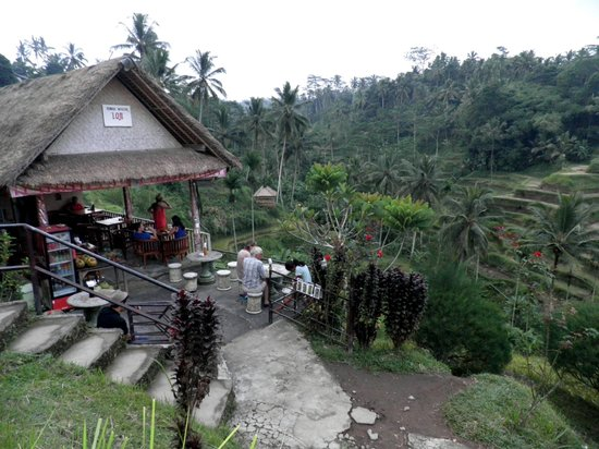 Tegalalang Rice Terrace: Restaurant with a main view of the rice terrace