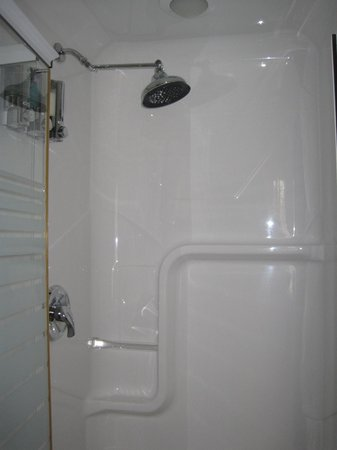 City Gardens Bed and Breakfast: ensuite bathroom shower (king room only)