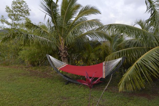 The Palmwood: The Hammock - very comfy!