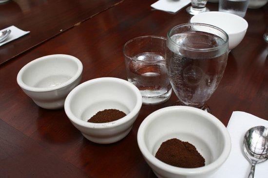 Finca Rosa Blanca Coffee Plantation & Inn: cupping