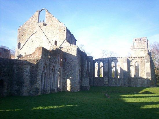 Netley Abbey: ruiny