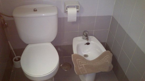 Albergue Juvenil y Colegio Mayor Galileo Galilei : Bidet y WC
