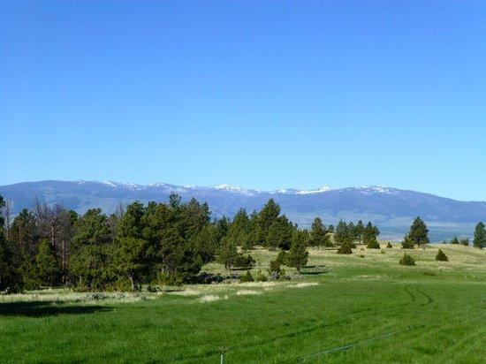 Hidden Hollow Hideaway Cattle and Guest Ranch: Breathtaking views