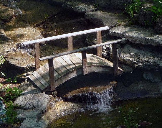 Forest Hill Bed and Breakfast: Bridge to serenity in the back garden