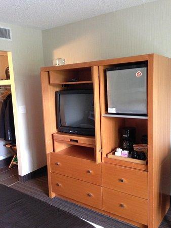 Banff Aspen Lodge: TV and fridge