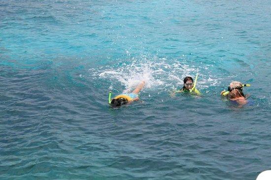 Traveler Catamaran: Snorkeling after lunch