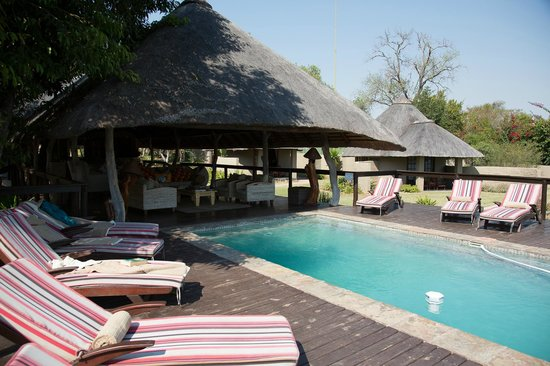 Arathusa Safari Lodge: Pool