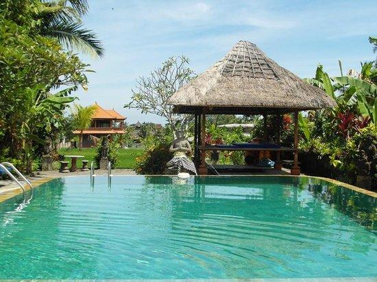 Gayatri Bungalows: pool