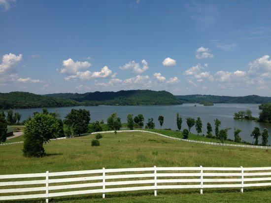 Whitestone Country Inn: Beautiful views of the lake