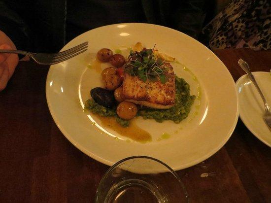 Sugar Baking Co & Restaurant: fish special