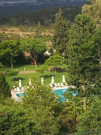 Carmel Forest Spa Resort by Isrotel Exclusive Collection: the outside pool