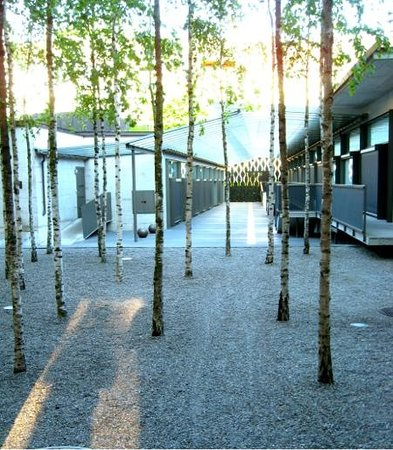 Hotel Greulich : contemplative courtyard of birches