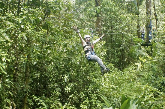 Rainforest Adventures: Woo hoo!  Ziplining over the rain forest!