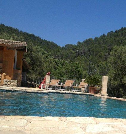 Can Torna: Pool mit Aussicht auf bewaldete Hügel
