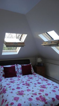 Alba House: We loved sleeping under the open skylights!