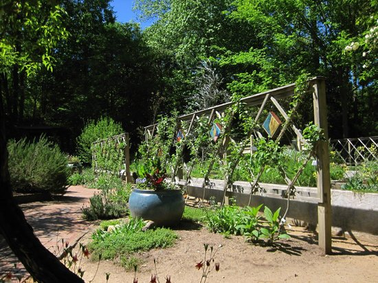 North Carolina Botanical Garden: Herb Garden