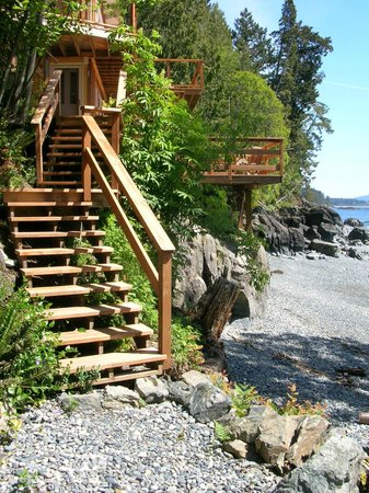 Eagle Cove Beachfront Guest Suites: Stairs to the Beach