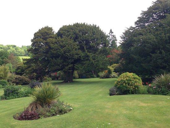 Garden Centre: One Of Scotland's 100 Heritage Trees