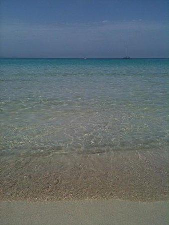 Zingaro Hotel: il mare