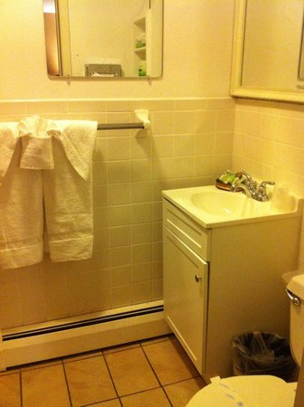 Williamstown Motel: Clean bathroom
