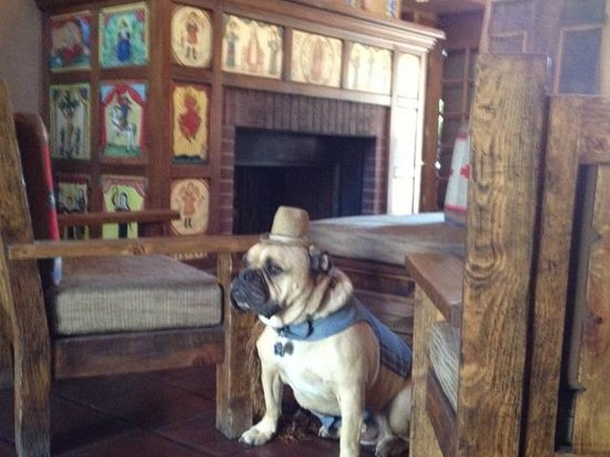 Hotel Chimayo de Santa Fe: Travelin' Jack checking out the Lobby and Fireplace