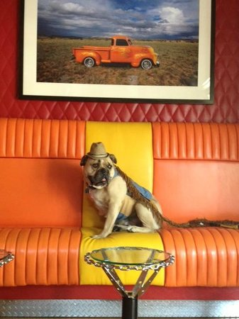 Hotel Chimayo de Santa Fe: BAR TIME!  the Low N Slow Lowrider Bar.  (Don't tell Jack he's a Dog....he'd never believe it!)