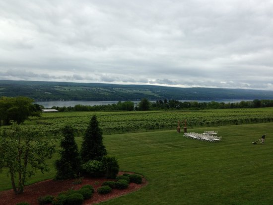 Seneca Lake Wine Trail: Wondeful view of the lake
