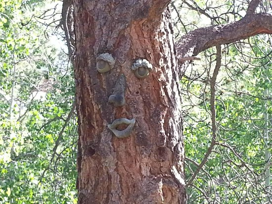 Dripping Springs Resort: Welcome Tree