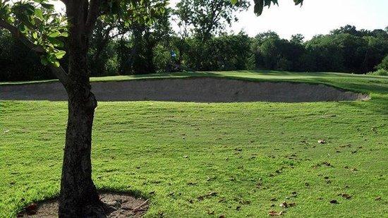Riverside Golf Club: very well kept
