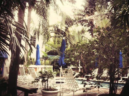 Sobe You Bed and Breakfast: The Courtyard with the Pool