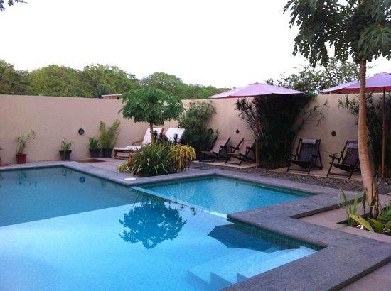 Nautilus Boutique Hotel - Wellness Retreats: Pool